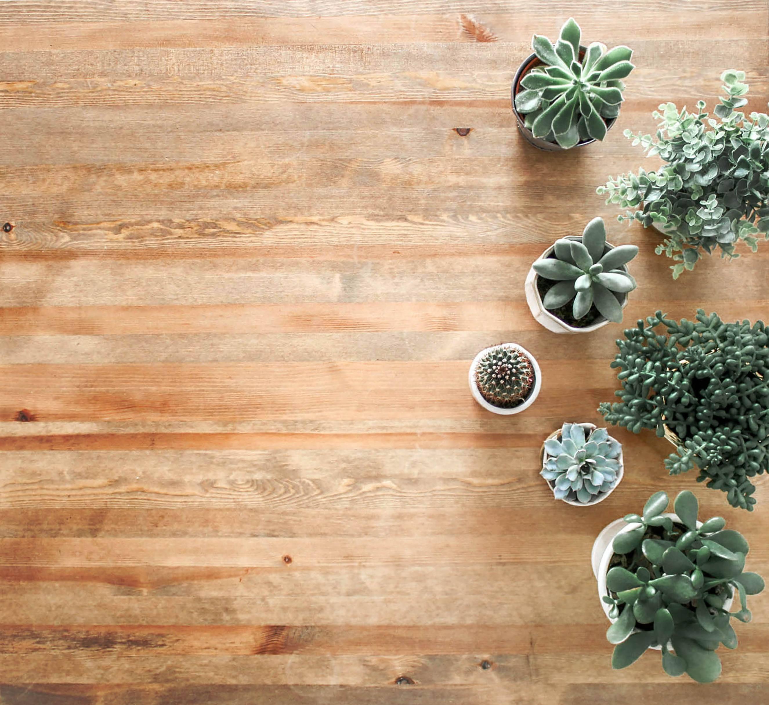 Med en gulvslibning får dit trægulv nyt liv